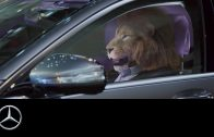 Mercedes-Benz-presents-King-of-the-City-Jungle-S-Class-Commercial